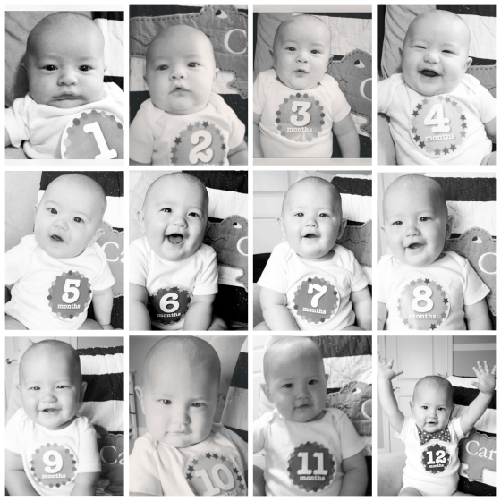 12-month-collage